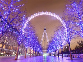 London & Lights