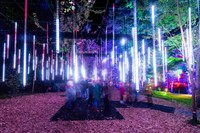 Perthshire & the Enchanted Forest
