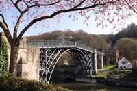 Shropshire Spring Special