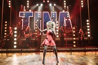 Tina Turner the Musical